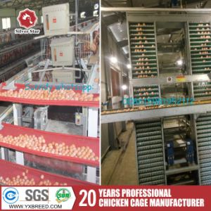 Steel Battery Layer Cage Poultry Chicken Farming Equipment pictures & photos