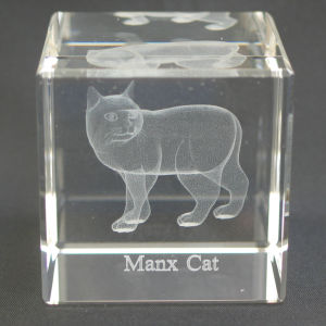Factory 3D Cat Laser Engraved Crystal Cube for Souvenir pictures & photos