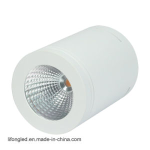 IP65 Water Rated COB LED Surface Munted Downlights pictures & photos