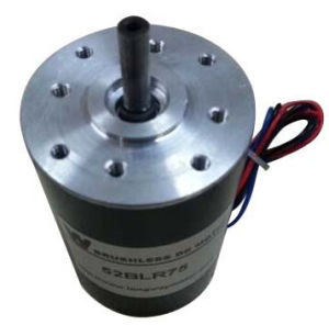 52blr BLDC Motor for Industrial Robot pictures & photos