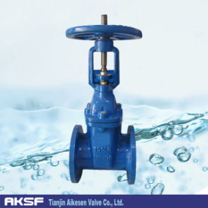 Gg20/ Gg40/ Gg50 DIN3202 Flange Rising Stem Gate Valve Pn10/ Pn16 pictures & photos