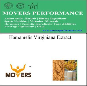Good Price Hamamelis Virginiana Extract pictures & photos