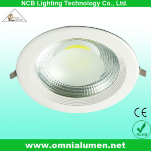 10W 15W 20W 30W COB Down Light Fixture /Ceiling Lamp LED Ceiling Light