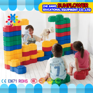 The Octagonal Building Landscape Developmental Toys Children Toys pictures & photos