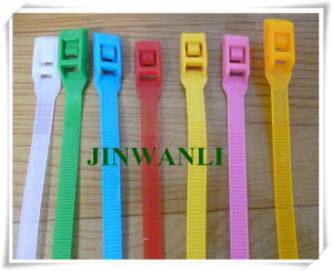 in-Line Nylon Cable Tie Double-Locking Cable Tie pictures & photos