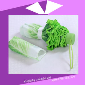 New Moulding Advertising Umbrella in Cabbage Design P016-018 pictures & photos