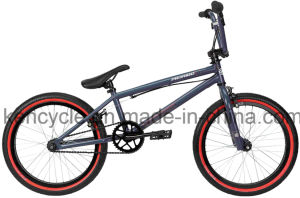 20 Inch Hi-Ten Frame BMX Bike/ Bicicleta/ Dirt Jump BMX/ Sy-Fs2042 pictures & photos
