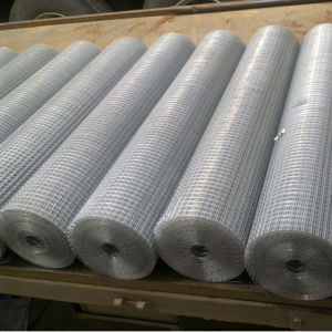 China Factory Best Quality Low Price Galvanized Welded Wire Mesh pictures & photos