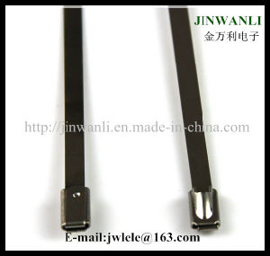 Epoxy Black Coated Stainless Steel Cable Tie pictures & photos