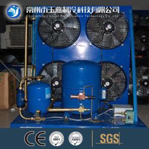 Emerson-Copeland Compressor Condensing Unit for Freezer pictures & photos