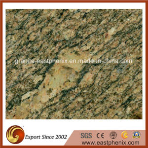 Imported Calefornia Gold Granite Stone Wall/Kitchen Tile pictures & photos