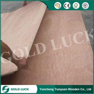 Best Price Bintangor / Cherry / Maple / Oak Commercial Plywood pictures & photos