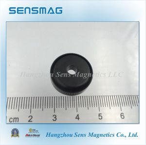 Permanent Magnetic Assembly with Pot Magnet Epoxyed Coated pictures & photos