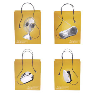 Printed Gift Paper Bag Shopping Bag pictures & photos