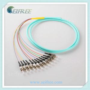 12 Cores G652D Fiber Optic Pigtail Cable pictures & photos