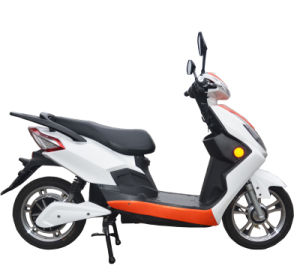 Electric Scooter with Pedal 800W Motor 48V20ah Battery pictures & photos