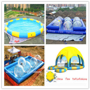 High Quality Inflatable Water Swimming Pool with Tent (CYPL-1490) pictures & photos