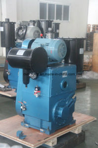 Professional Industrial Rotary Piston Vacuum Pump with CE Certificate pictures & photos
