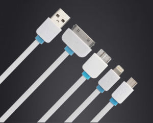Hihg Quality 4 in 1 Noodle Flat USB Cable Four Color 100cm for iPhone Sangsung Andriod pictures & photos