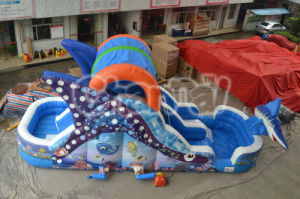Attractive Undersea Inflatable Slide/Dolphin Inflatable Slide for Kid pictures & photos