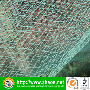 Manufacture Wind Proof Net for Agricultural pictures & photos