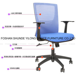 Professional Adjustable Gas Lift Executive Mesh Ergonamic Swivel Office Chair pictures & photos