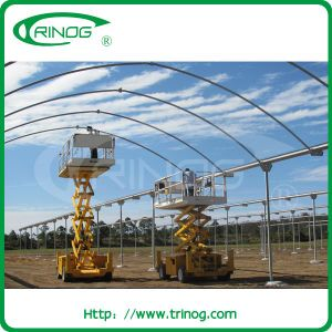 Fixed Roof Vent Plastic Film Greenhouse for seeding pictures & photos