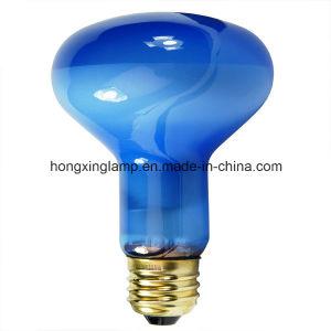 Blue Plant Light R80/R25 pictures & photos