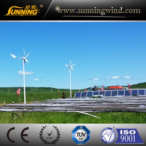 Quiet Wind Power Wind Generator Toy 600W pictures & photos