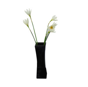 Modern Hotel Black Resin Vase pictures & photos