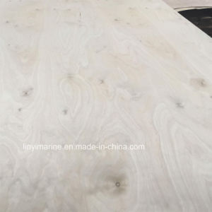 White Birch Plywood C/D Grade Carb 2 Certificate Poplar Core pictures & photos
