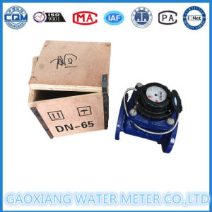 Large Diameter Woltmann Water Meter (LXL-50E-300E) pictures & photos