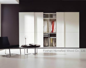 Modern Bedroom Wardrobe Clothing Cabinet (HF-EY09046) pictures & photos