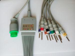 Schiller 12pin Aha DIN3.0 EKG/ECG Cable pictures & photos