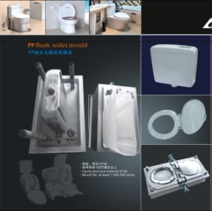 Plastic PVC 110mm Tee Mould pictures & photos