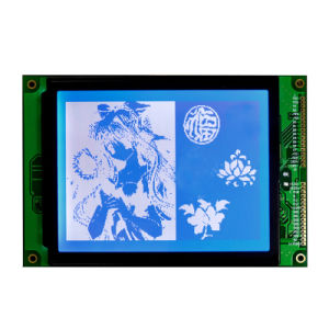 Monochrome LCD Stn 240X160 Graphic LCD Display Screen pictures & photos