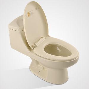 Cheap Price Sanitary Ware, Ceramic Dual Flushing Bone Toilet pictures & photos