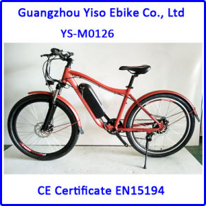 350W 21 or 22 Inch Electric Mountain Ebike with Lipo Battery pictures & photos