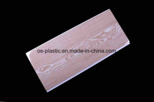 Cielo Raso En PVC Madera pictures & photos