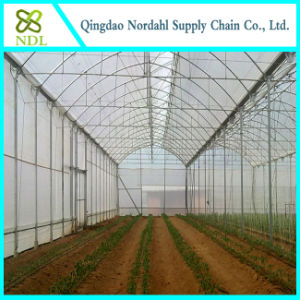 Double Film Agricultural Greenhouse pictures & photos