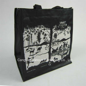 Customized Laminated PP Woven Bag (BG1069) pictures & photos