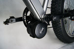 Bafang MID Motor Fat Bike! Electric Fat Bike MID Motor pictures & photos