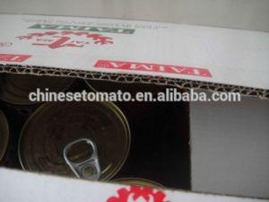 Tomato Paste Yoli Brand Tomato Sauce Price pictures & photos