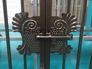 Ce/SGS Bronze Powder Coated Galvanized Steel Gate for Decoration and Protection pictures & photos