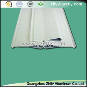 Top Aluminum Water Dripping Aluminum Screen Ceiling pictures & photos