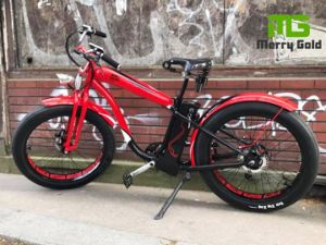 Powerful 750W Fat Tyre Electric Bicycle pictures & photos