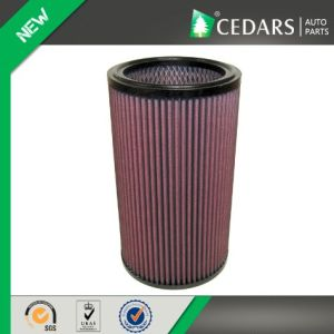 Excellenct performance Truck Air Filter with 10 Years Experience pictures & photos