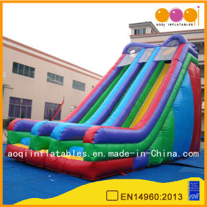 Amusement Park Equipment Big Colorful Inflatable Water Slide (AQ09169) pictures & photos