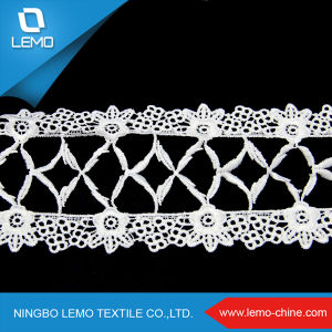Dress Lace and Emboridered Strips Garment, Dress with Lace Pattern pictures & photos
