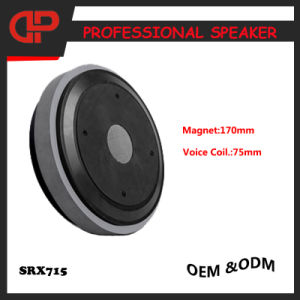 Stage PRO Audio Speaker Srx715 PA Speaker pictures & photos